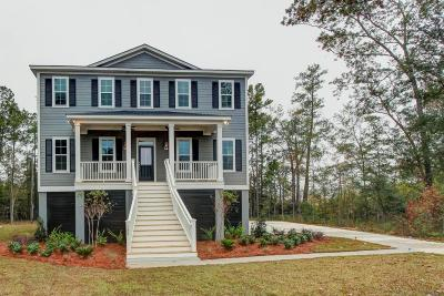Hanahan Single Family Home Contingent: 1206 Pasture View Drive