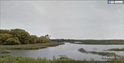 James Island Residential Lots & Land For Sale: 1397 Harbor View Road