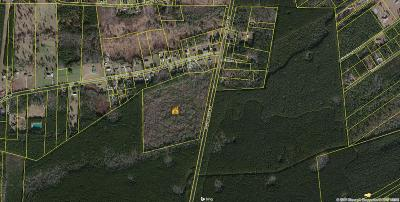 Summerville Residential Lots & Land For Sale: Sheep Island Road