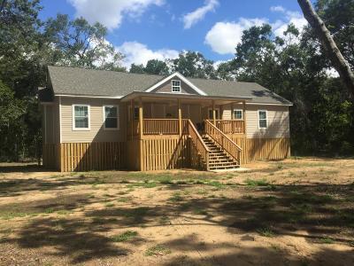 Edisto Island Single Family Home For Sale: 8416 Palmetto Road