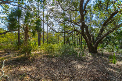Seabrook Island Residential Lots & Land For Sale: 2465 Seabrook Island Road