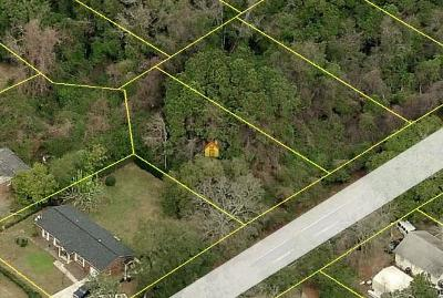 Charleston County Single Family Home Contingent: 973 Dills Bluff Road