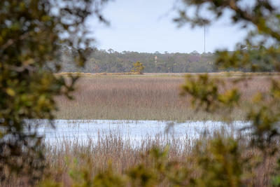 Kiawah Island Residential Lots & Land For Sale: 38 Burroughs Hall