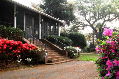 Summerville Single Family Home For Sale: 410 Central Avenue