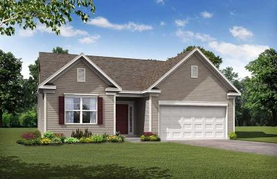 Moncks Corner SC Single Family Home For Sale: $232,990