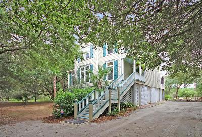 Edisto Island Single Family Home For Sale: 8869 Marsh Aire Lane
