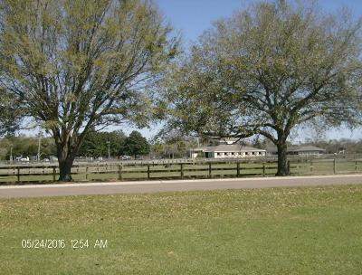 Johns Island Single Family Home For Sale: Lot A-6 Seabrook Island Road