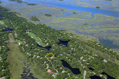 Kiawah Island Residential Lots & Land For Sale: 401 Snowy Egret