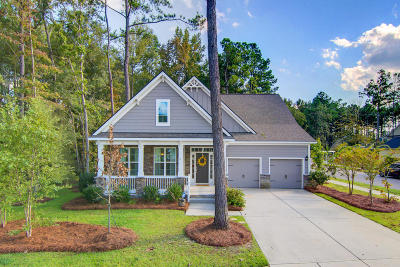 Summerville Single Family Home Contingent: 213 Ribbon Road