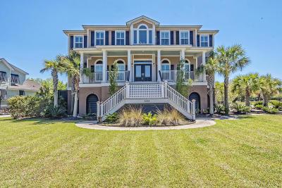 Charleston Single Family Home Contingent: 1224 Blue Sky Lane