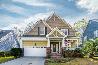 Summerville Single Family Home For Sale: 114 Carriage Ride Lane