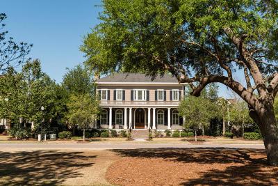 Daniel Island Single Family Home For Sale: 147 Island Park Drive