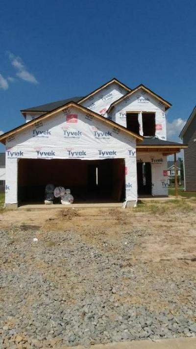 Single Family Home For Sale: 1393 Wild Goose Trail