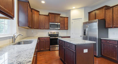 Moncks Corner Single Family Home For Sale: 178 Emerald Isle Drive