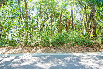 Charleston County Residential Lots & Land For Sale: 3062 Seabrook Island Road