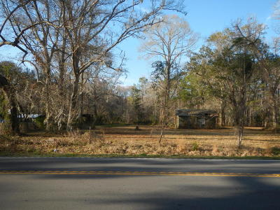 Johns Island Residential Lots & Land For Sale: 4160 River Road