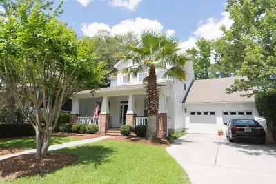 Daniel Island Single Family Home For Sale: 2042 Pierce Street