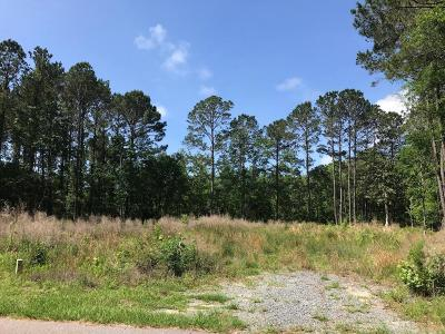 Residential Lots & Land For Sale: 1003 Theodore Road