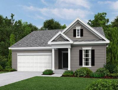 Charleston County Single Family Home For Sale: 1111 Turkey Trot Drive