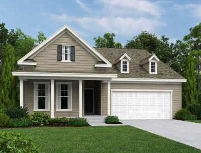 Charleston County Single Family Home For Sale: 1222 Turkey Trot Drive