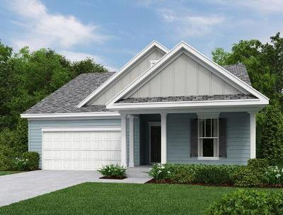 Charleston County Single Family Home For Sale: 1122 Turkey Trot Drive