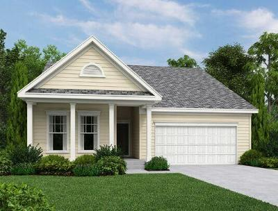 Charleston County Single Family Home For Sale: 1001 Turkey Trot Drive