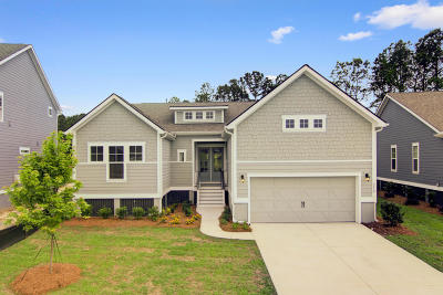 Single Family Home Contingent: 212 Red Knot Lane