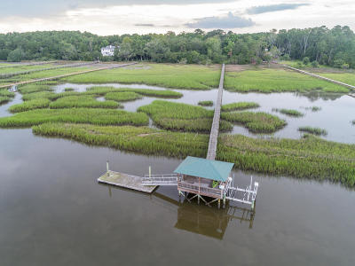 Wadmalaw Island Residential Lots & Land For Sale: 1984 Long Creek Road