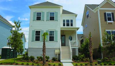 Daniel Island Single Family Home For Sale: 2580 Josiah Street