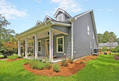 Charleston County Single Family Home For Sale: 1993 Hollings Road