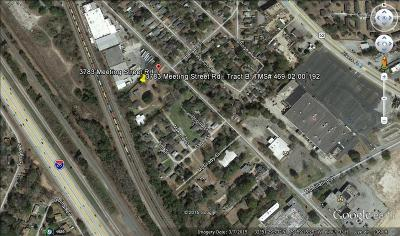 Residential Lots & Land For Sale: 3783 Meeting Street Road #Tract B