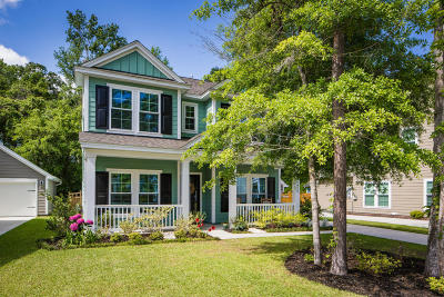 Johns Island Single Family Home Contingent: 1625 Sparkleberry Lane
