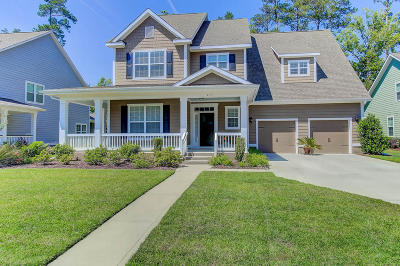 Summerville Single Family Home For Sale: 217 Silver Cypress Circle