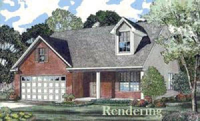 Charleston County Single Family Home For Sale: 3493 Plow Ground Road #Lot 18
