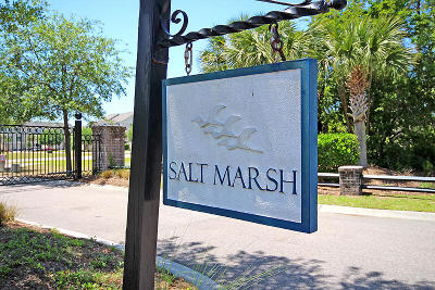 Johns Island Attached For Sale: 3005 Eliza Darby Lane #1