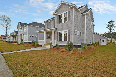 Ravenel Single Family Home For Sale: 3998 Capensis Lane
