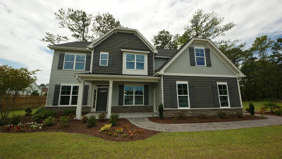Johns Island Single Family Home Contingent: 25 Woodbury Park Drive