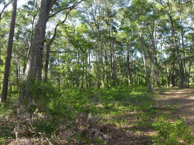 Edisto Island SC Residential Lots & Land For Sale: $52,500