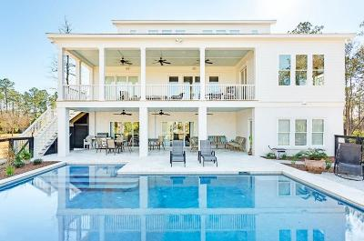 Charleston Single Family Home For Sale: 621 Parrot Point Drive