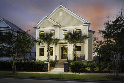 Daniel Island Single Family Home For Sale: 213 Amberjack Lane