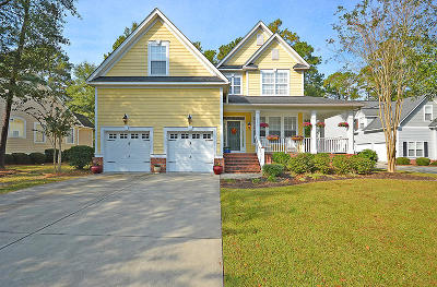 North Charleston, West Ashley Single Family Home For Sale: 8756 Herons Walk