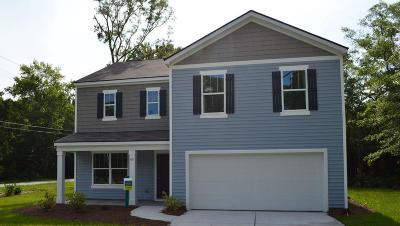 Moncks Corner Single Family Home For Sale: 141 Stoney Creek Way