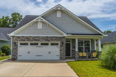 Mount Pleasant Single Family Home For Sale: 1275 Shingleback Drive