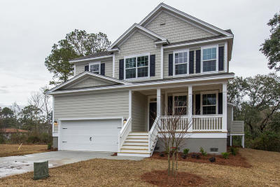 James Island Single Family Home For Sale: 820 Riverton Way
