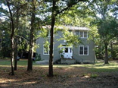 Wadmalaw Island Single Family Home For Sale: 2506 Grace Chapel Road