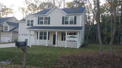 Berkeley County, Charleston County, Colleton County, Dorchester County Single Family Home For Sale: 124 Swan Drive