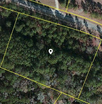 Johns Island Residential Lots & Land For Sale: 3325 Westphal Drive