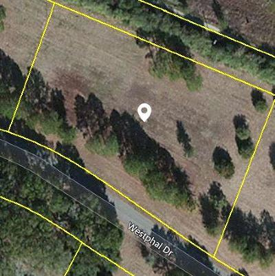 Johns Island Residential Lots & Land For Sale: 3350 Westphal Drive