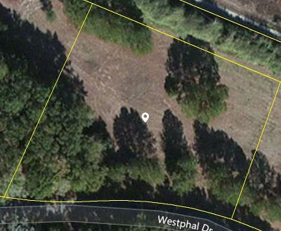 Johns Island Residential Lots & Land For Sale: 3356 Westphal Drive