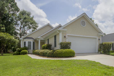Elms Of Charleston Single Family Home For Sale: 9039 Hackney Court